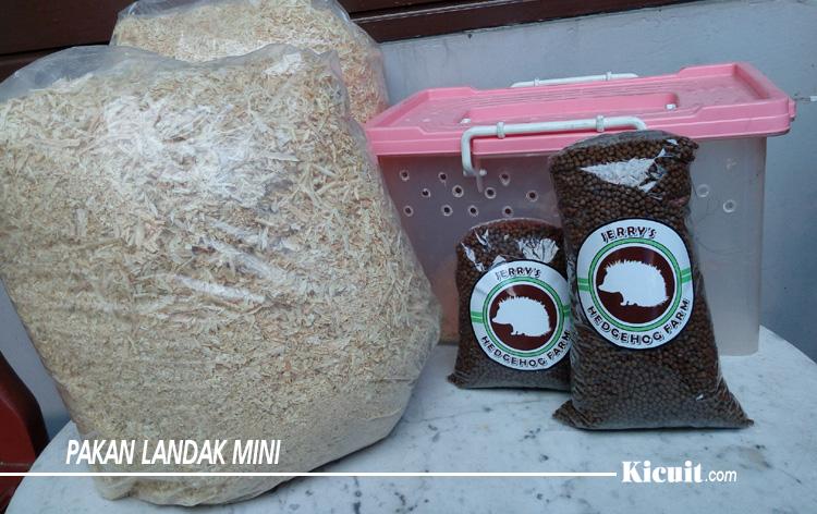 Makanan Landak Mini